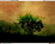 Ubuntu 6.06 LTS的屏幕截圖,背景桌布為Ubuntu的黎明 ,此為其中一個預設安裝的桌布,供使用者選擇採用。